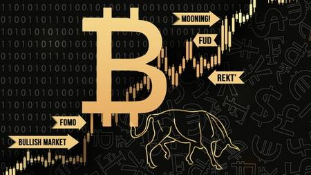 Crypto to freedom trading course