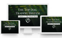 Top Dog Trading System : Momentum As a Leading Indicator