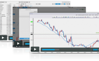 [DOWNLOAD] Advanced Price Action Course -Chris Capre